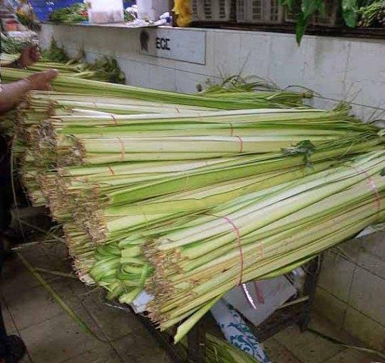 Longgokan daun kelapa