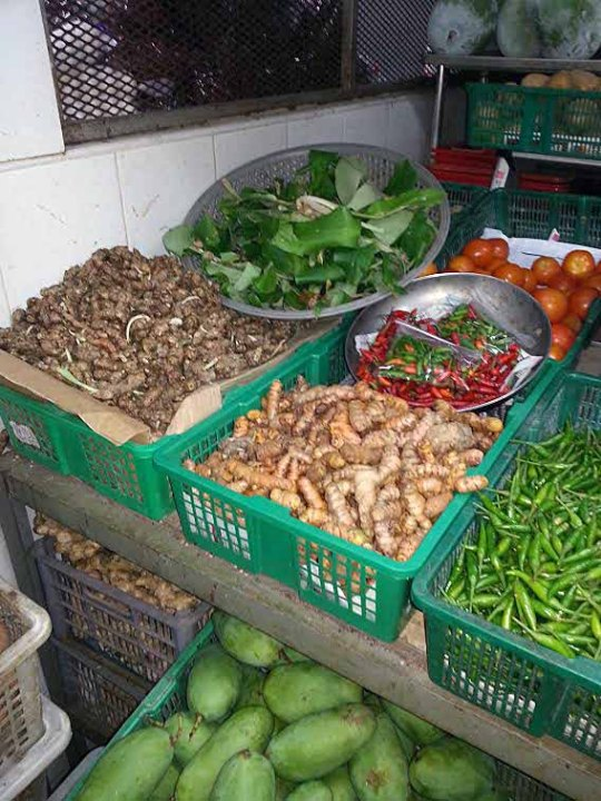 Just some of the roots & herbs used in typical Malay dishes